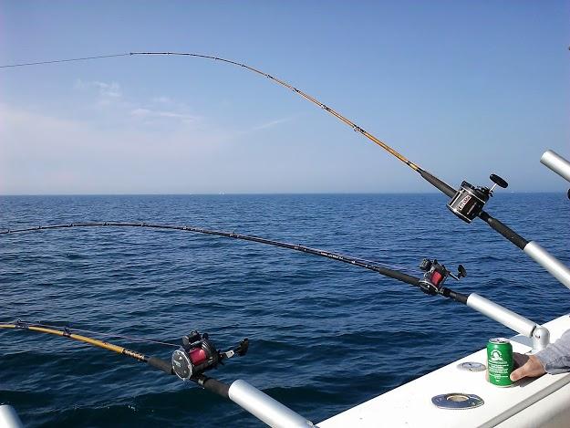 Dos and Don'ts Charter Fishing - StowandtellU