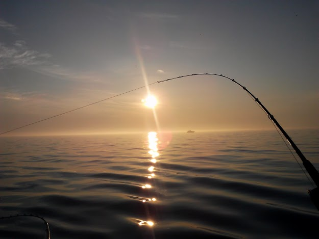 horizon-charter-fishing-StowandTellU