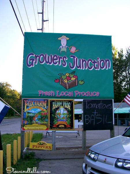 Fruit stand near Warren Dunes State Park