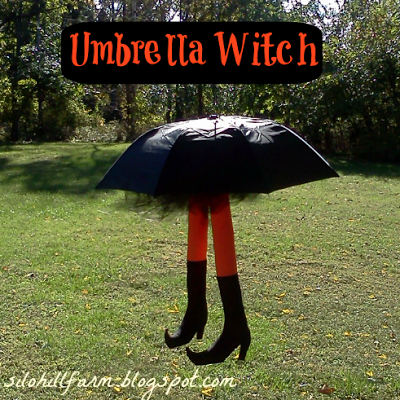Umbrella Witch -Silo Hill Farms