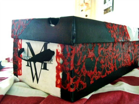 Shopping Bag Shoe Box Storage-StowandTellU2-a