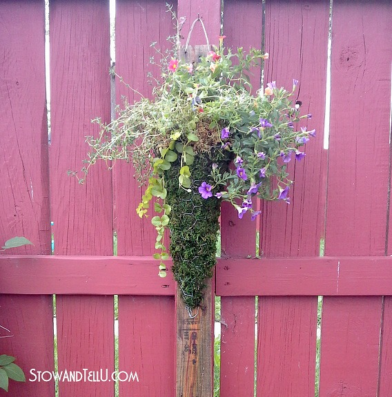 how-to-make-chicken-wire-moss-planter