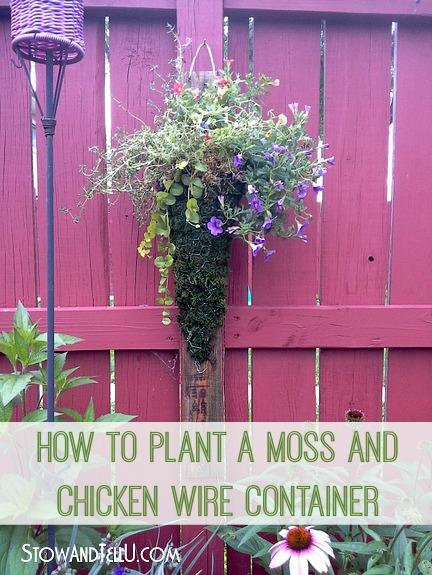 plant-moss-chicken-wire-flowers