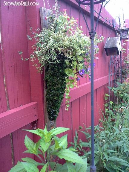 moss-chicken-wire-hanging-planter